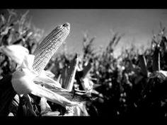 αγροτικά νέα / agrocapital