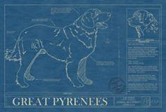 Animal Blueprint Company: Great Pyrenees Dog Print