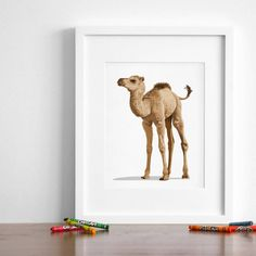 Baby tiger artwork, baby animal nursery art prints from Paper Llamas Baby Animal Nursery, Penguin Nursery, Bunny Nursery, White Nursery, Sophisticated Nursery, Baby Animal Drawings, Baby Camel, Baby Room Neutral, Gender Neutral