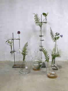Vintage Industrial laboratory stands vases glass, Laboratory vases bottle - ALL ABOUT Crystal Aesthetic, Indoor Plant Pots, Window Design, Dream Decor, Aesthetic Iphone Wallpaper, Vintage Glassware, Vintage Industrial, Wedding Centerpieces, Interior Inspiration