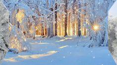 Футаж Зимняя зарисовка HD