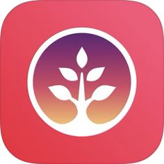 Family Tree Builder, Scanner App, Mac App Store, Apple Apps, Family Photos, Iphone, Ios, Family Pictures, Family Photo