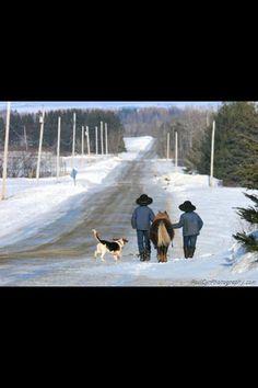 Northern Maine Amish