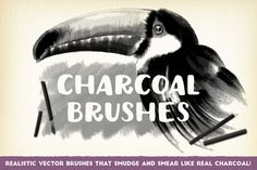 Charcoal Brushes  @creativework247