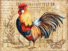 Chicken Signs, Chicken Art, Poultry Breeds, Country Chicken, Rooster Painting, Chicken Painting, Cute Chickens, Chalk Paint Furniture, Vintage Pictures