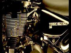 Client - Taj Royal's Rider ,       Product - TV Commercial,       Agency - Brand Avenue, Creative Director -  Preeti Gaur Concept - Ankyt Sharma,