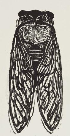 Cicada / insect - woodcut print - Kent Ambler, U.S.A. | Relief ...