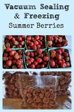 Vacuum Sealing Summer Berries - via Better Hens and Gardens