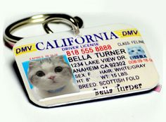 Dog Tag Pet Tag Custom Name Tag California Driver License by ID4Pet. $25.00, via Etsy.