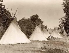 Here for your browsing pleasure is a grand photo of an Indian Tepee Camp. It was made in South Dakota in 1908 by Edward S. Curtis.    The illustration documents Four canvas covered Tepees with Assiniboine women and children seated on ground.    We have compiled this collection of photos mainly to serve as a vital educational resource. Contact curator@old-picture.com.    Image ID# 42B2FF08