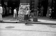 São Paulo – década de 40  Hildegard Rosenthal