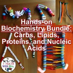 Biochemistry Activity Bundle with Four Macromolecules for High School Biology High School Biology, Middle School Science, Science Classroom, Teaching Science, Science Education, Teaching Ideas, Teaching Career, Classroom Resources, Teaching Resources