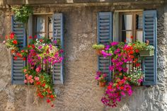Vintage windows with open wooden shutters and fresh flowers by Mazzzur. Vintage windows with open wooden shutters and fresh flowers Cheap Wall Tapestries, Tapestry Beach, Wooden Shutters, Window Shutters, Inspire Me Home Decor, Flower Boxes, Flower Ideas, Tapestry Wall Hanging, Tapestry Bedroom