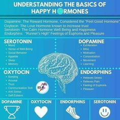 brain health Understanding the basics of the four happy hormones! Do you need help elevating these happy hormones naturally I did too! But not anymore thanks to my happy coffee Visit below to learn more! Mental And Emotional Health, Mental Health Awareness, Mental Health Facts, Mental Health Nursing, Health And Nutrition, Health And Wellness, Nutrition Education, Brain Facts, Brain Science