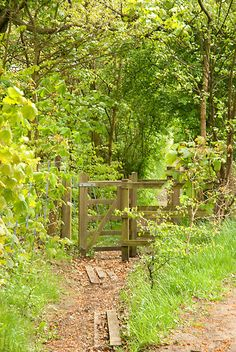 """Country path in Bolton in the Northwest of England.in Spring. When we were little we'd hike across the Oaks' Fields to Bromley Cross for a """"high tea"""" with my father's maiden aunts. Loved thumping on their piano!"""