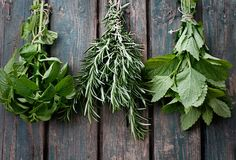 Top 10 Herbs by Nutrient Density on http://livingmaxwell.com