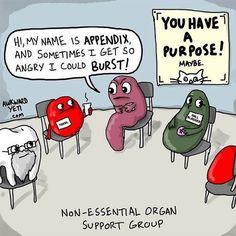 Non-Essential Organ Support Group  Picmonic.com  #medhumor #medschool #medicalschool #nursingschool #nursinghumor #nursingschoolprobs