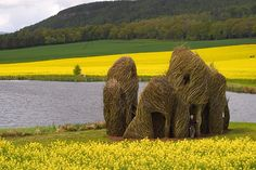 I'd love to see some of these sculptures and installations in person!  Contemporary Basketry: June 2012