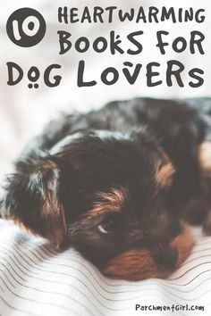 Lily and the Octopus, The Art of Racing in the Rain, and more heartwarming books for dog lovers!
