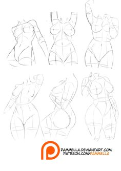 Anatomy: Curvy Shapes by Pammella on DeviantArt