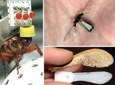 11 Stealthiest Spy Gadgets & Hi-Tech, These 11 crazy spy gadgets, from low-tech DIY projects to top-secret experiments, will have you feeling paranoid that somebody – or something – is watching you. Iphone Gadgets, Baby Gadgets, High Tech Gadgets, Gadgets And Gizmos, Electronics Gadgets, Technology Gadgets, Electronics Projects, Cool Gadgets On Amazon, Awesome Gadgets