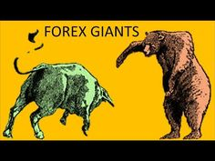How can I start trading Forex- Make 100 a day Trading Forex Make 100 A Day, How To Make, Day Trading, Forex Trading, Moose Art