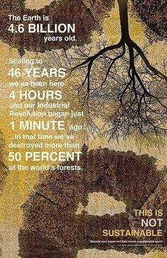 In poche parole, è come se in circa un minuto avessimo distrutto circa il 50% delle foreste del nostro pianeta: azioni certamente poco sostenibili!