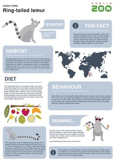 Zoo Infographic signage on Behance