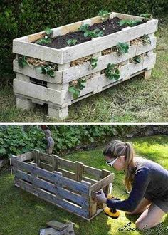 57 Trendy Garden Boxes From Pallets Strawberry Planters Vegetable Planters, Diy Planters, Vegetable Garden, Herbs Garden, Pallet Planters, Strawberry Planters Diy, Strawberry Garden, Container Gardening, Gardening Tips
