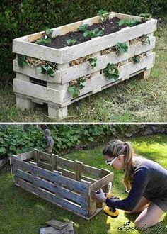 Une palette en bois peut se transformer en jardinière