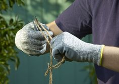 Professional Cut Resistant Glove
