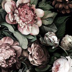Dark Floral II Black Saturated Wallpaper - by Ellie Cashman Design - SR. Black Floral Wallpaper, Flowers Wallpaper, Botanical Wallpaper, Trendy Wallpaper, Textured Wallpaper, Wall Wallpaper, Vintage Floral Wallpapers, Wallpaper Ideas, Black And White Flowers