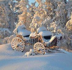 left out in the snow.left out in the snow…. I Love Winter, Deep Winter, Winter Fun, Winter Snow, Winter Christmas, Photo D Art, Winter Magic, Winter Scenery, Snowy Day