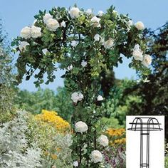 Umbrella Trellis, 36-inch by Jackson & Perkins. $54.95