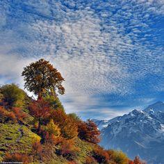 Svaneti by Alexander Deshkovets on 500px