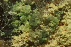 Waylandite avec Bismutite. Ritterzeche in Schneeberg, Erzgebirge FOV=1 cm Copyright Graul
