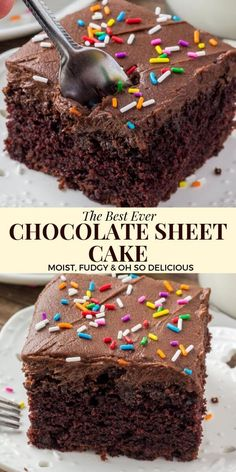 This chocolate sheet cake is an easy recipe made with everyday ingredients that you already have in your pantry. It's moist and fudgy with a delicious chocolate flavor and topped with chocolate frosting recipes easy Chocolate Sheet Cake Chocolate Cake Recipe Easy, Chocolate Cookie Recipes, Homemade Chocolate, Chocolate Chip Cookies, Chocolate Frosting, Delicious Chocolate, Cake Chocolate, Chocolate Sheet Cake Recipe From Scratch, Chocolate Cake Recipe Cocoa Powder