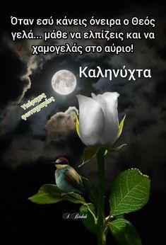 Kara, Good Night, Have A Good Night