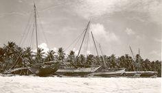 Native Boats.jpg (832×482)