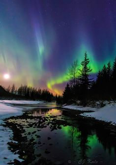 Aurora Borealis -  Alaska.I want to go here one day.Please check out my website thanks. www.photopix.co.nz