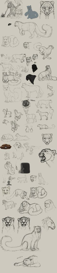 Beware, this file is HUGE! You have been warned. This is a sketchdump of pretty much everything I uploaded on my tumblr so far, I figured why not compile it and show it here while I can't be very p...