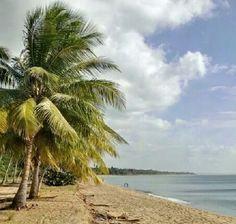 Playa, yabucoa