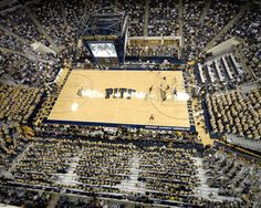 Pittsburgh Panthers: Petersen Events Center Picture at Pittsburgh Panther Photos Pitt Basketball, Basketball Games, College Basketball, Pittsburgh Sports, University Of Pittsburgh, Pitt Panthers, Sports Baby, City Photo, Travelogue