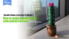needle felt tutorials for beginners --How to make needle felted cute potted cactus