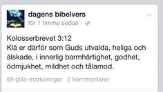 Bibelord