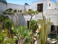 Casa Philip Dixon, un oasis en Venice Beach, California - Nomadbubbles Oasis, Dixon Homes, Riad Marrakech, Gardening For Dummies, Piscina Interior, Gardening Zones, Gardening Hacks, Gardening Supplies, Dry Garden