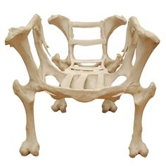 Bone Chair    The perfect gift for that finicky ghoul in your life