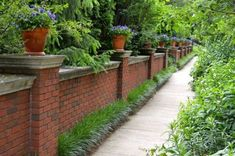 Red Brick Fences With Potted Plants