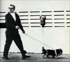 Meyer Lansky walking dog
