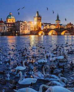 There is usually some snow in Prague before Christmas and then again in January, February, and even March, but every Prague winter is different. World Travel Guide, Travel Guides, Prague Winter, Visit Prague, Prague Czech Republic, Holiday Themes, Holiday Decor, Best Hotels, Taj Mahal